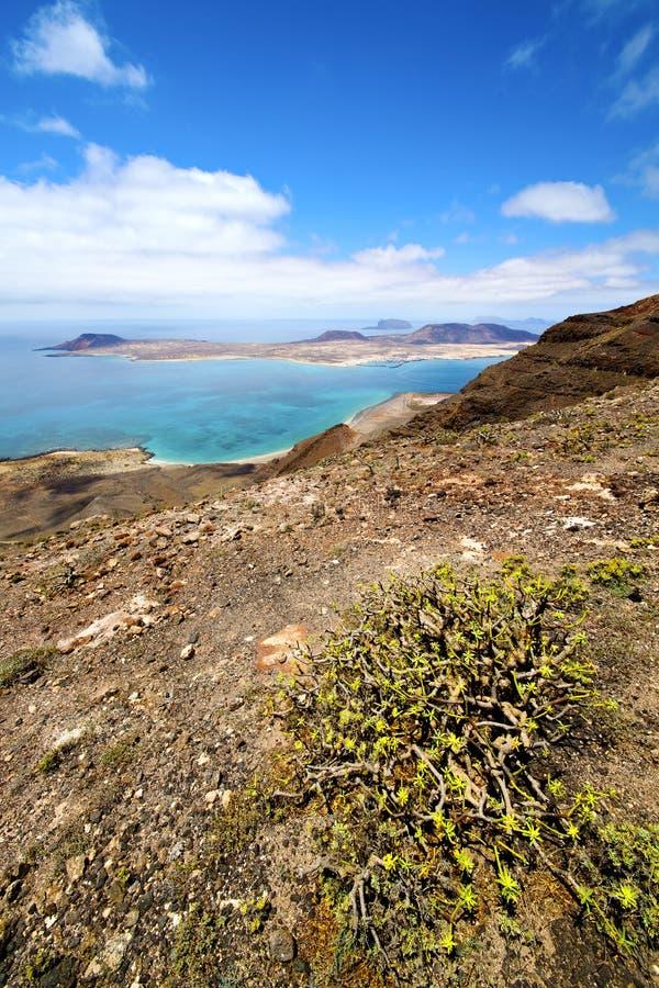 Fleurissez l'eau de Rio de del de Miramar à Lanzarote Espagne photos stock