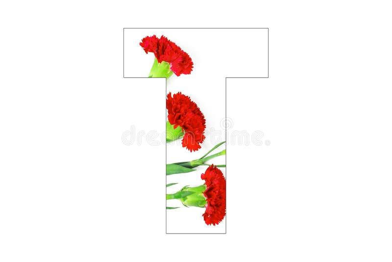 Fleurissez l'a-z d'alphabet de police fait de fleurs d'oeillet photo stock