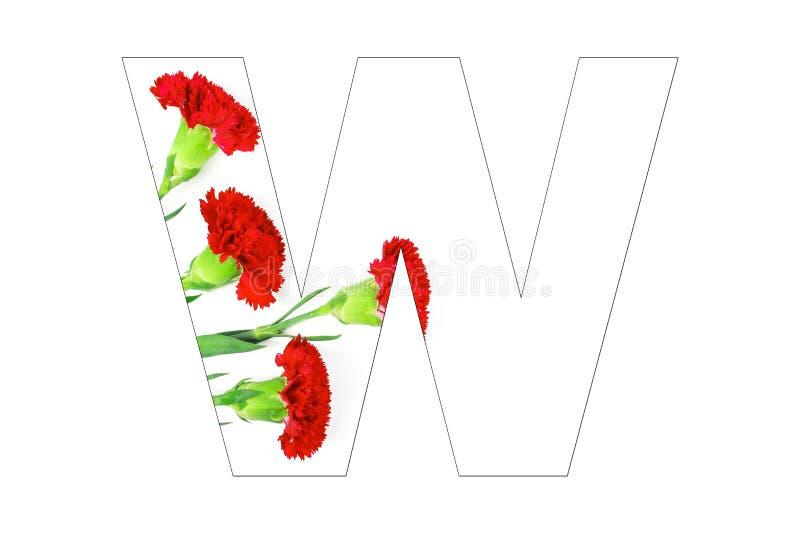 Fleurissez l'a-z d'alphabet de police fait de fleurs d'oeillet photographie stock libre de droits