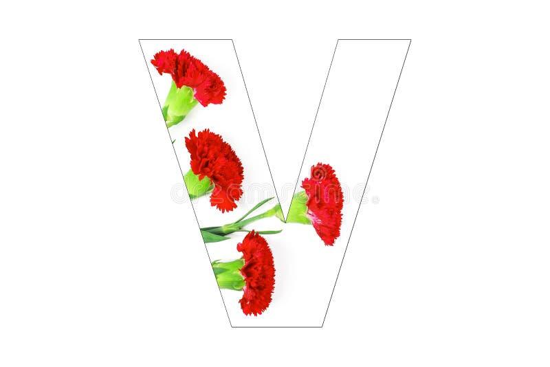 Fleurissez l'a-z d'alphabet de police fait de fleurs d'oeillet photos stock