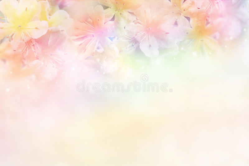 fleurissez le fond mou dans le ton en pastel pour la valentine images stock