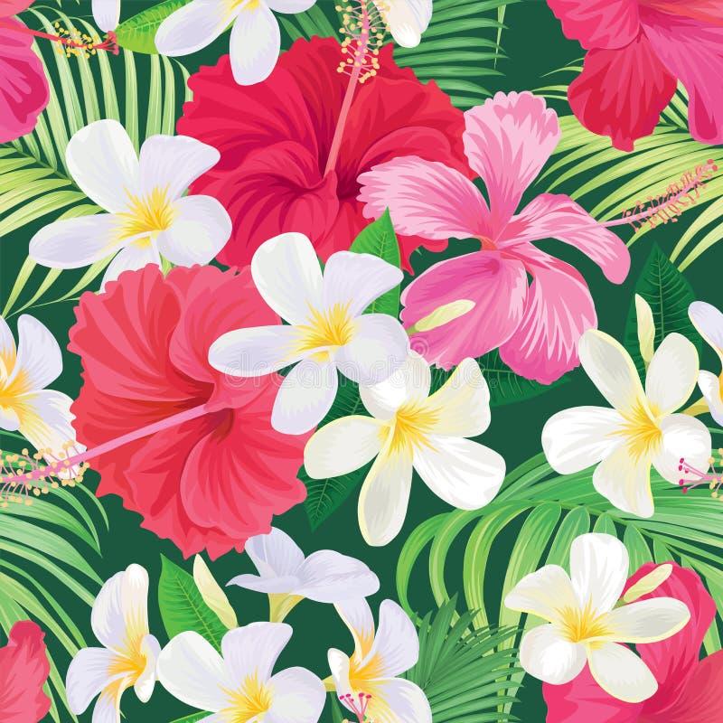 Fleurissez le modèle sans couture avec de belles fleurs et roses roses de lis d'alstroemeria sur le calibre blanc de fond illustration de vecteur