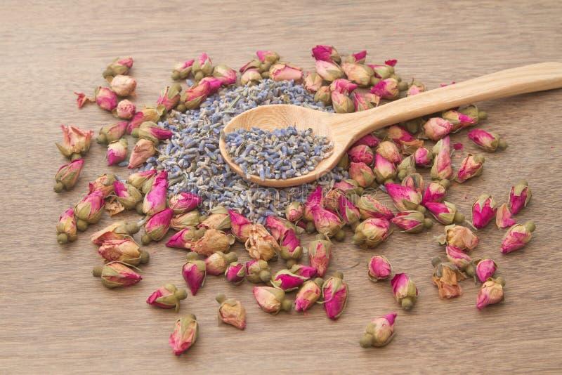 Fleurissez le thé, bourgeons roses et la lavande a disparu images stock