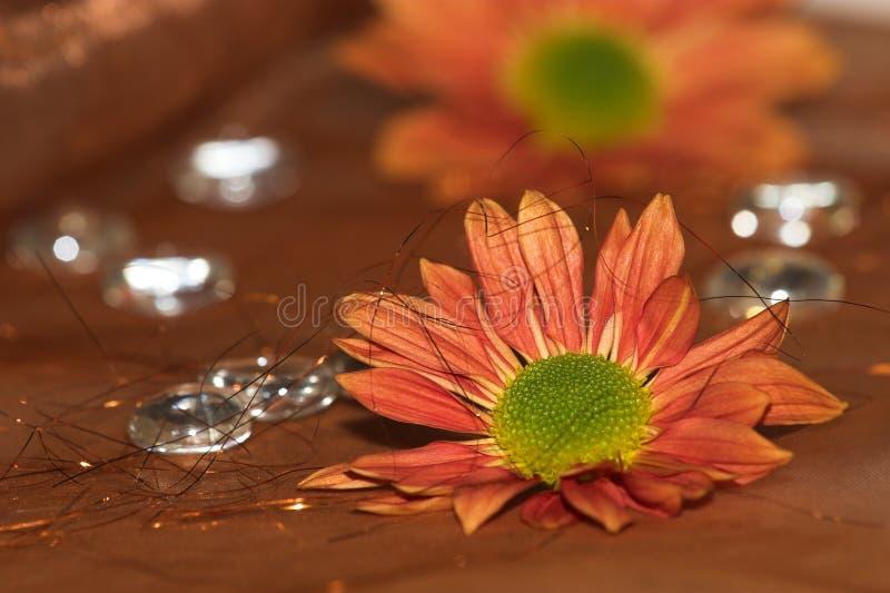 Fleurit #3 images stock