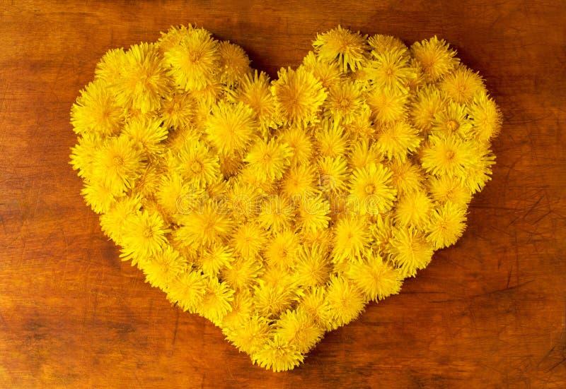 Fleurit la forme de coeur photo libre de droits