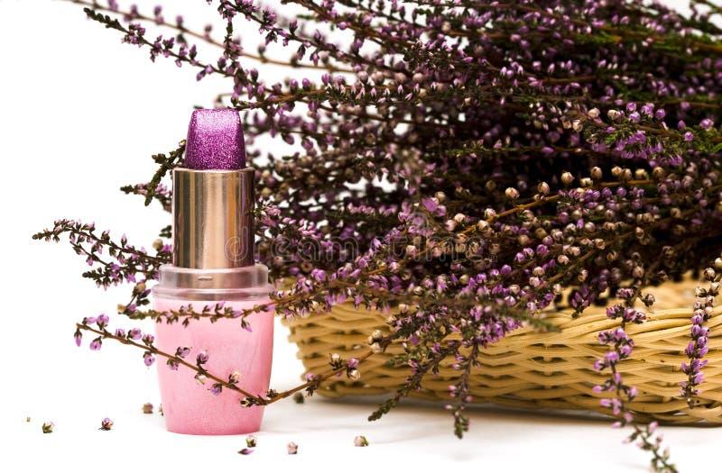 fleurit la violette de rouge à lievres image libre de droits