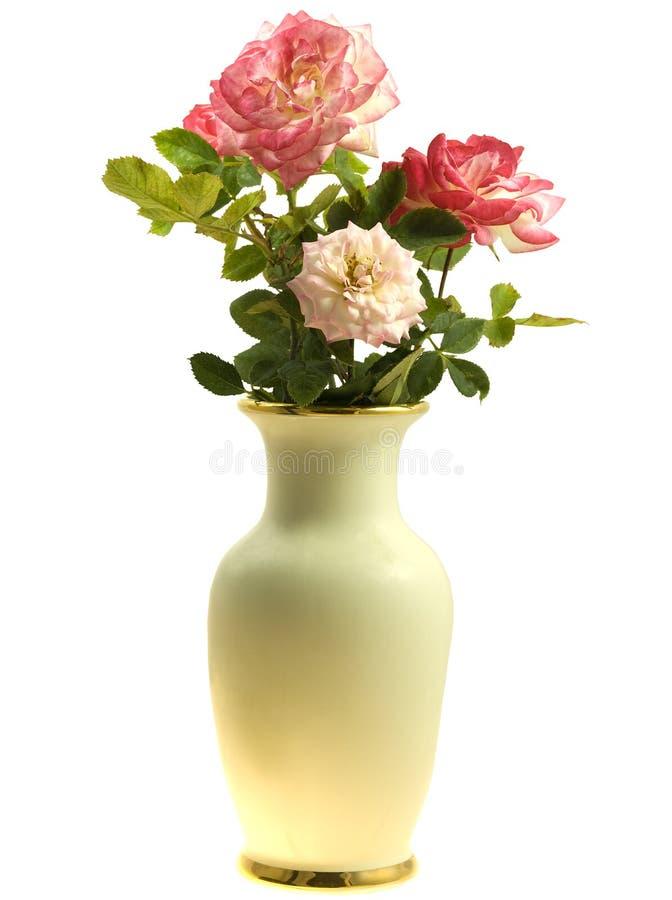 fleurit le vase à source de roses photos stock