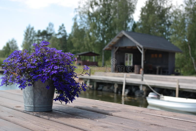 Fleurons bleus photo libre de droits