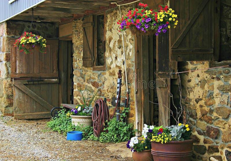 Fleurs à la grange photos libres de droits