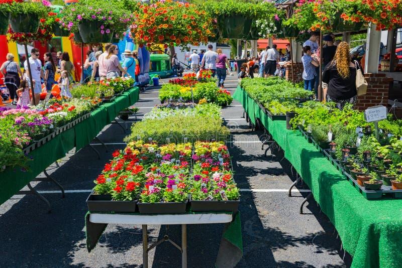 Fleurs à vendre chez Vinton Farmers Market photographie stock