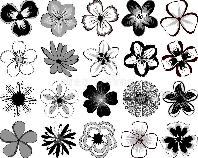 Fleurs. images libres de droits