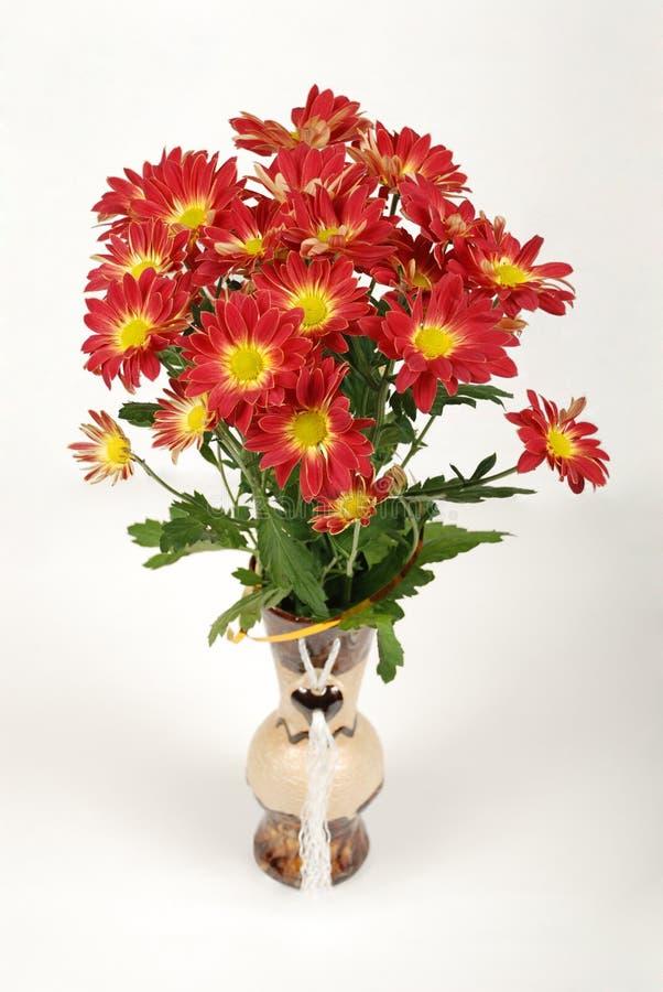 Fleurs, amour, cadeau, humeur, camomille, chrysanthème, vase, toujours la vie, bouquet image libre de droits