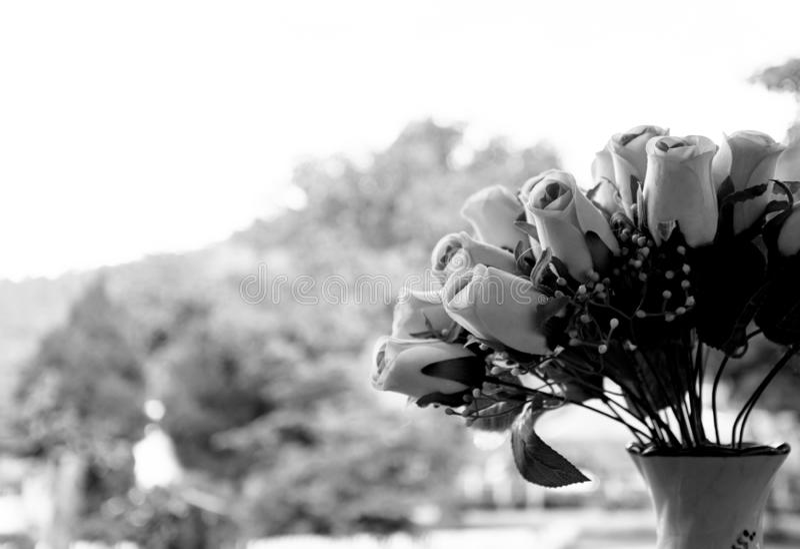 Fleurs artificielles de roses noires et blanches dans des vases images stock