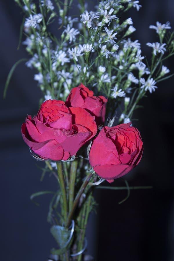 3 fleurs avec des significations photos stock