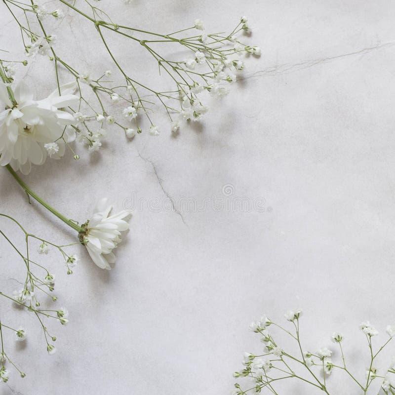 Fleurs blanches avec le gypsophila sur le fond de papier chiffonné avec l'espace de copie photo stock
