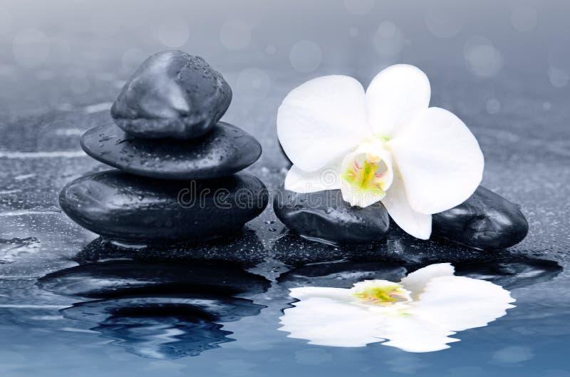 Fleurs blanches d'orchidée reflétées dans l'eau Fond de station thermale photo libre de droits