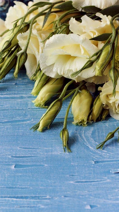Fleurs blanches se trouvant sur un conseil en bois bleu photographie stock libre de droits