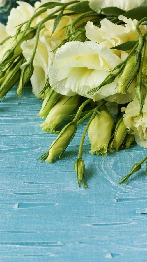 Fleurs blanches se trouvant sur un conseil en bois bleu photo libre de droits