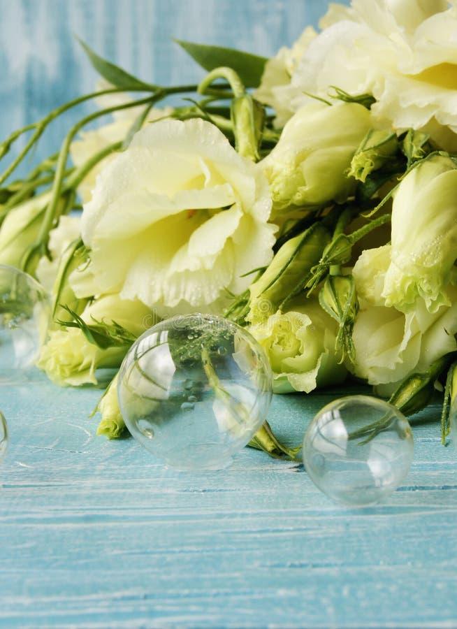 Fleurs blanches se trouvant sur un conseil en bois bleu photos stock
