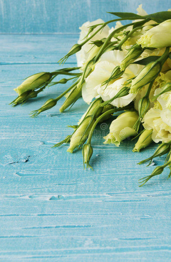 Fleurs blanches se trouvant sur un conseil en bois bleu image libre de droits
