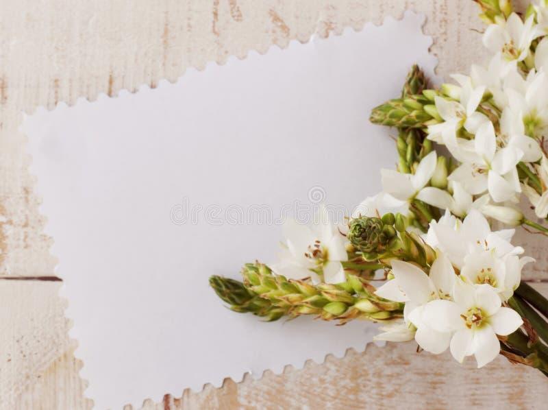 Fleurs blanches sur un fond en bois photos libres de droits