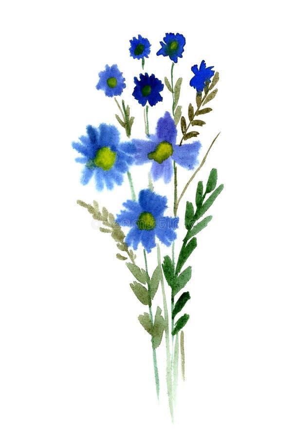 Fleurs bleues d'aquarelle illustration de vecteur