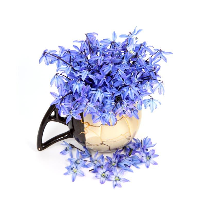 Fleurs bleues dans le vase image libre de droits