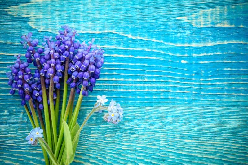 Fleurs bleues des bleuets, sur le fond en bois Vue supérieure image libre de droits