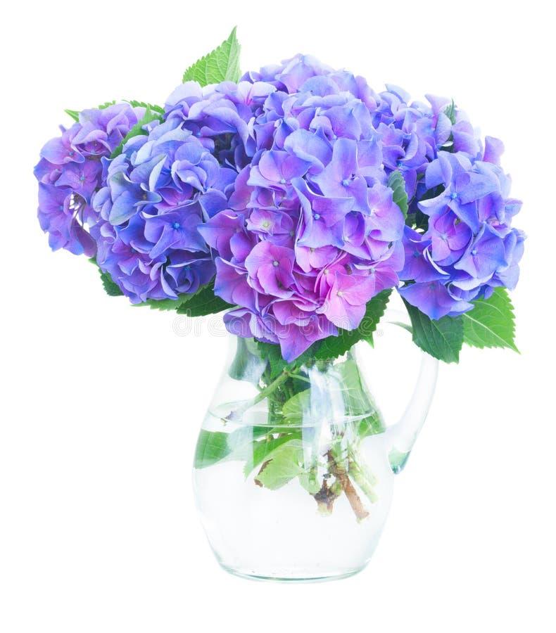 Download Fleurs Bleues Et Violettes De Hortensia Image stock - Image du nature, feuillage: 77158057