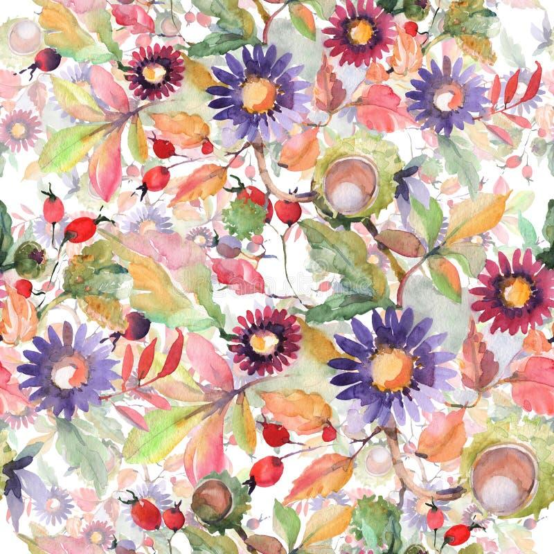 Fleurs botaniques florales de bouquet d'aster et de wildflower Ensemble d'illustration d'aquarelle Mod?le sans couture de fond photo libre de droits