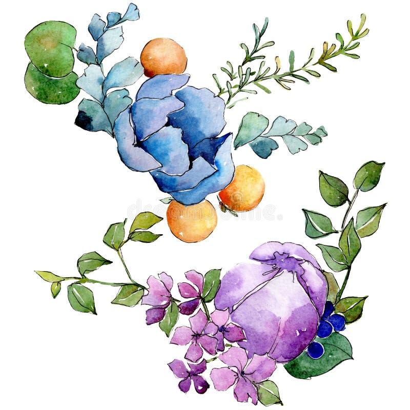 Fleurs botaniques florales de bouquet tropical Ensemble d'illustration de fond d'aquarelle ?l?ment d'isolement d'illustration de  photo libre de droits