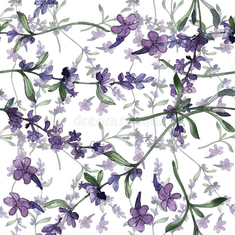 Fleurs botaniques florales de lavande violette Ensemble d'illustration de fond d'aquarelle Mod?le sans couture de fond illustration de vecteur