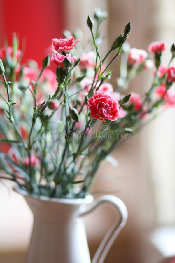 Fleurs : bouquet rose d'oeillets dans une cruche images stock