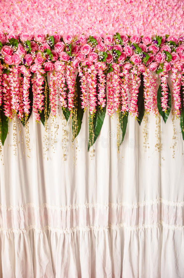 Fleurs colorées de rose de rose de contexte images stock