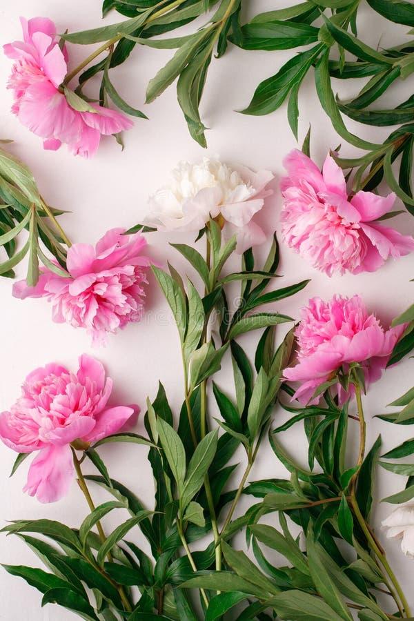 Fleurs colorées sur la table blanche L'espace pour le texte Disposition créative Romance, mode de vie de blogger, fond de fête mi image libre de droits