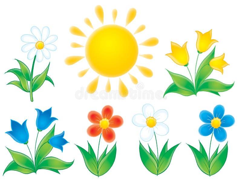 Fleurs d'été illustration libre de droits