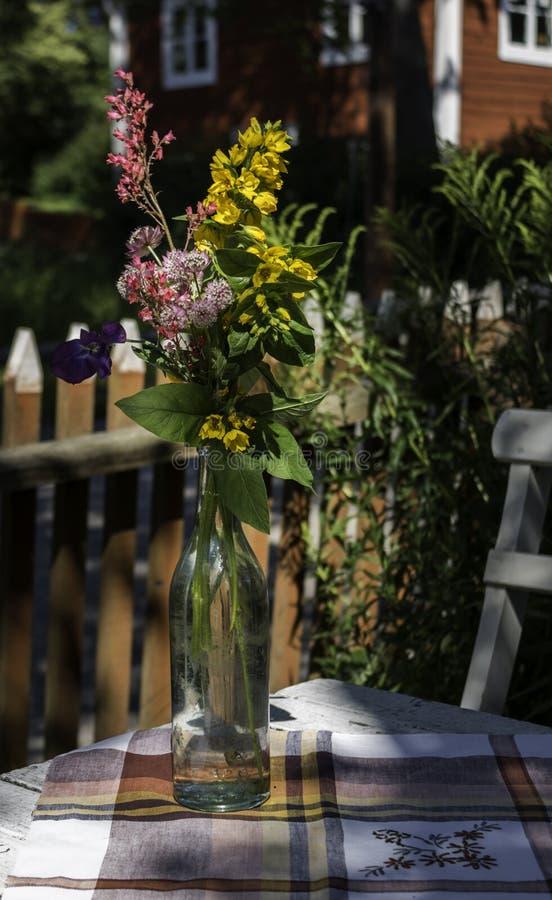 Fleurs d'été dans la bouteille en verre image libre de droits