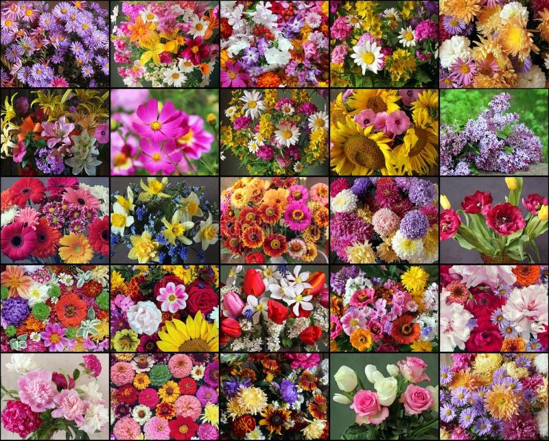 Fleurs d'été de collage bouquets d'été photos libres de droits
