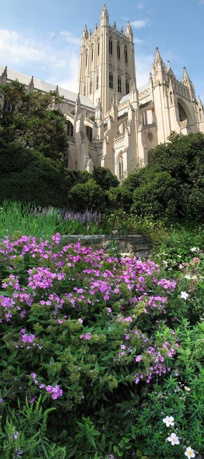 Fleurs d'été et cathédrale nationale images stock