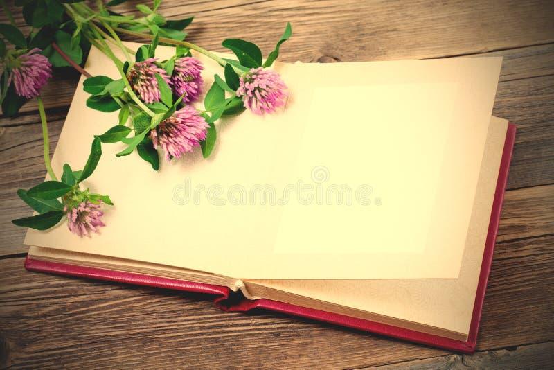 Fleurs d'album photos et de trèfle photographie stock libre de droits