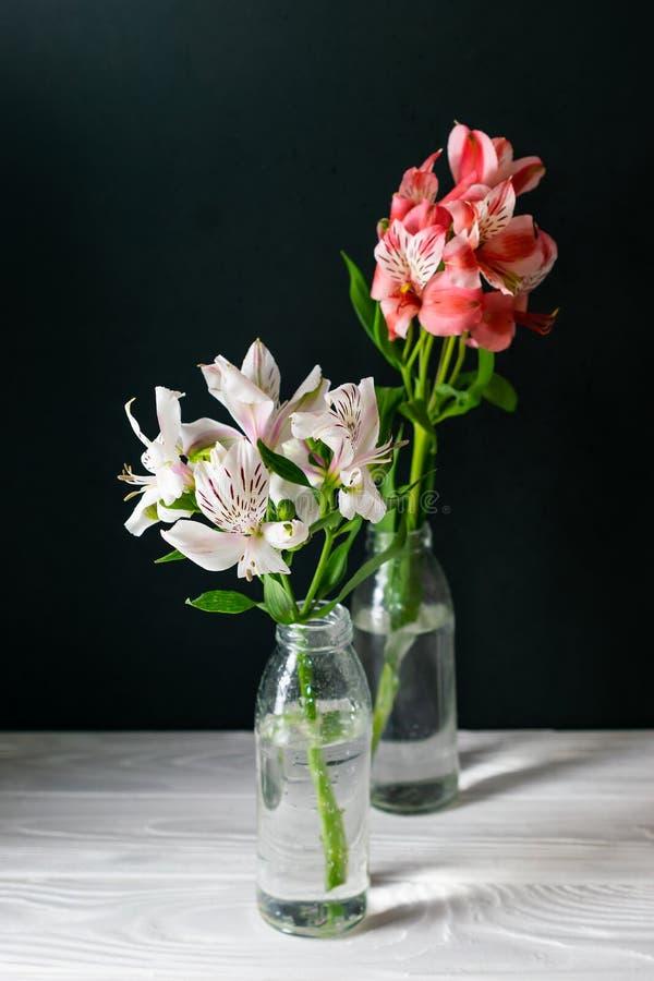 Fleurs d'Alstroemeria dans des bouteilles en verre sur le fond noir photo stock