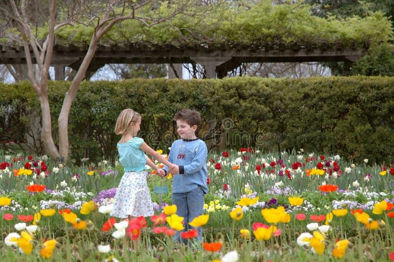 Fleurs d'amour image libre de droits