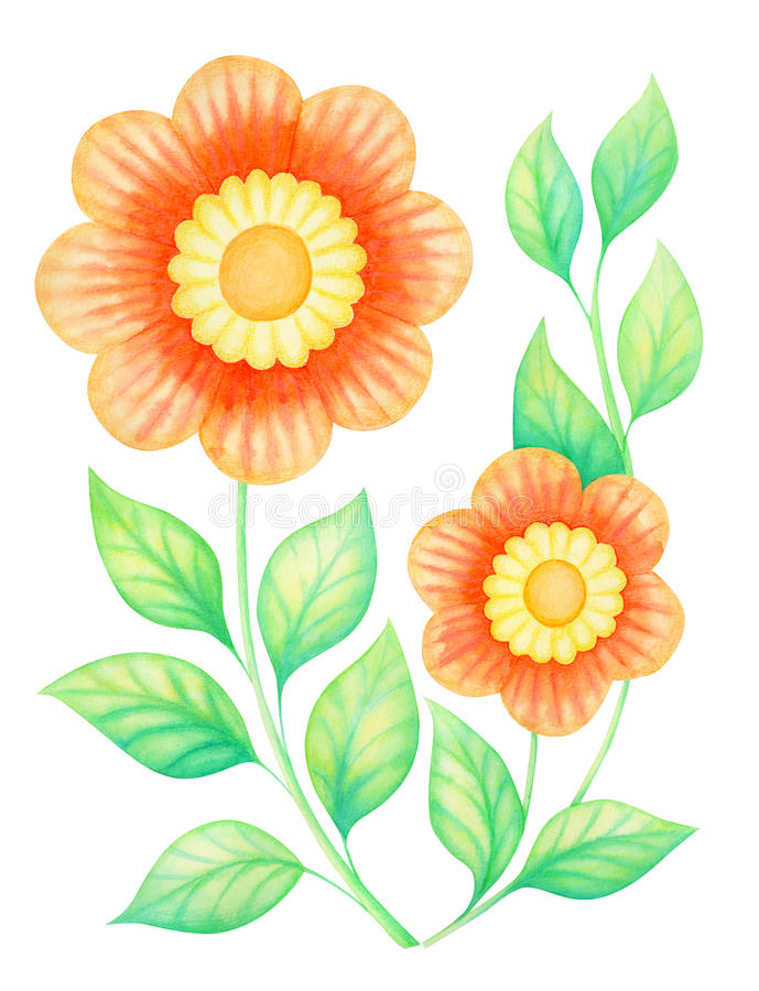 Fleurs d'aquarelle illustration stock