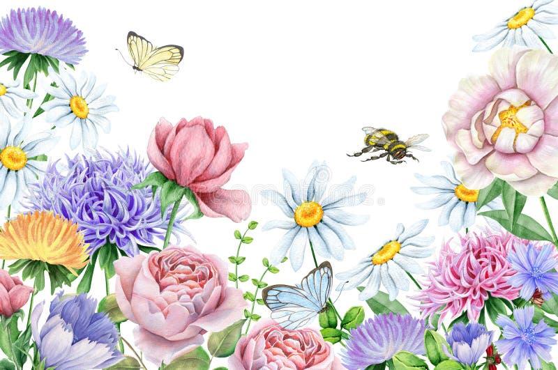 Fleurs d'aquarelle et papillons et abeille sur le blanc illustration libre de droits