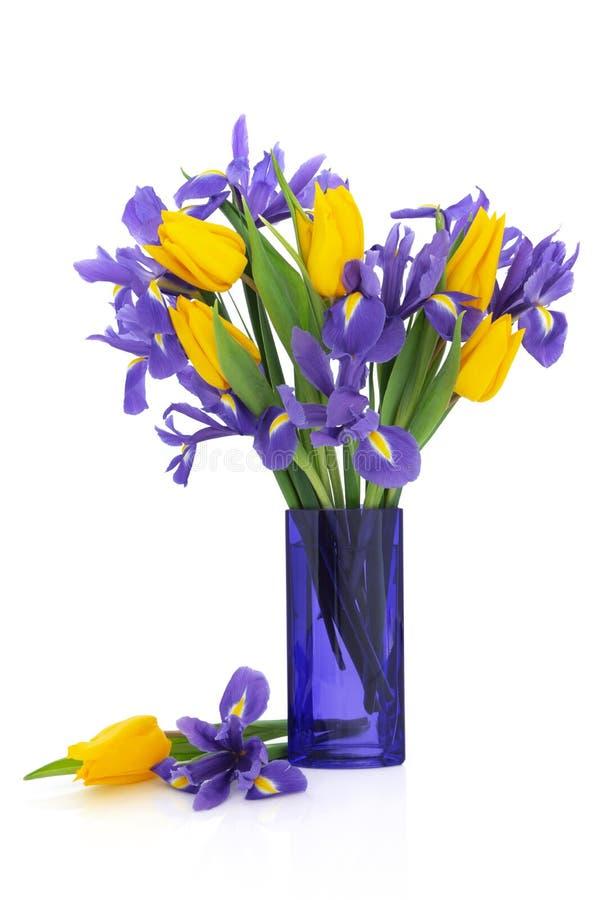 Fleurs d'iris et de tulipe images stock