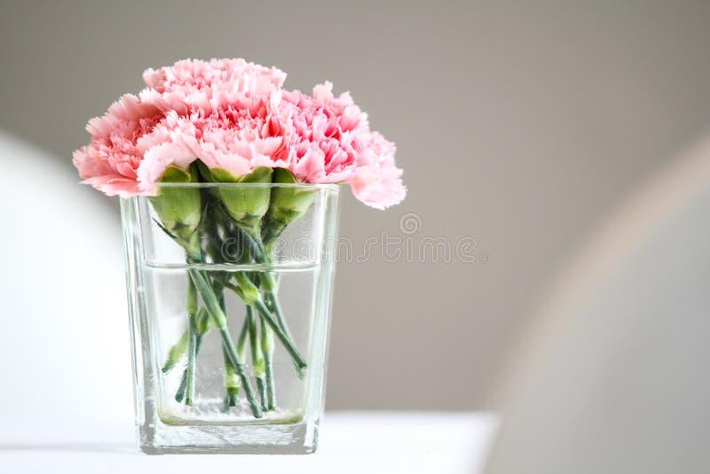 Fleurs d'oeillet photographie stock