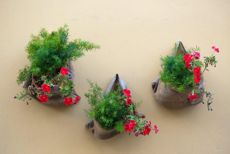 Fleurs dans des pots de fleurs sur la rue en Italie photographie stock