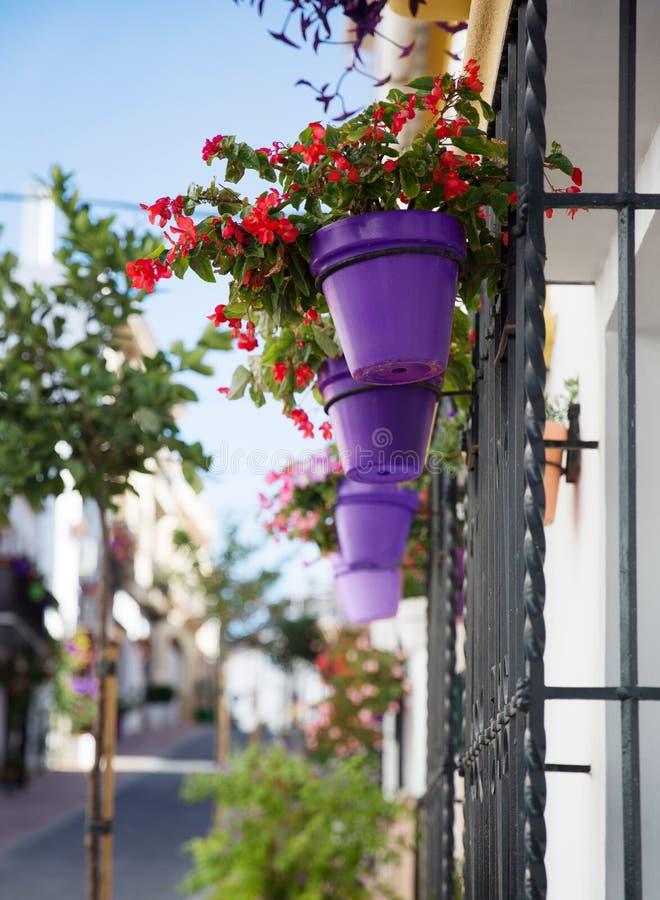 Fleurs dans le pot de fleurs ultra-violet sur le mur images libres de droits