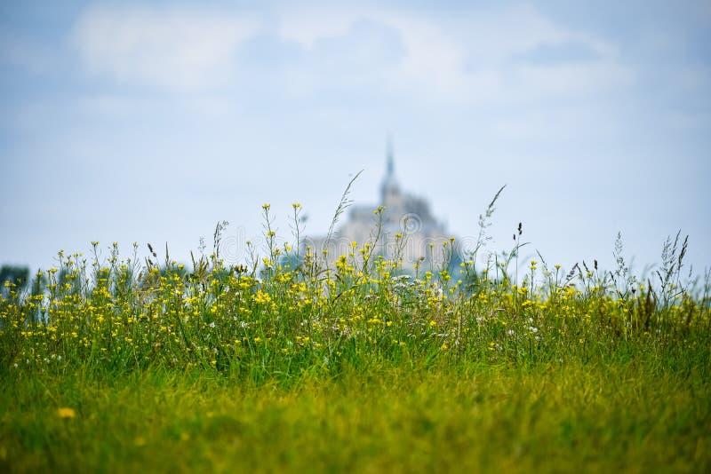 Fleurs dans le premier plan avec la silhouette defocused de Mont Saint Michel, France Copiez l'espace pour le texte photos libres de droits