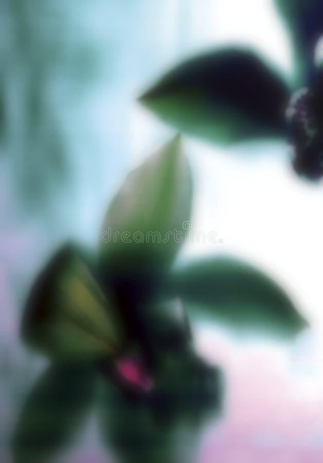 Fleurs dans le temps rêveur images libres de droits